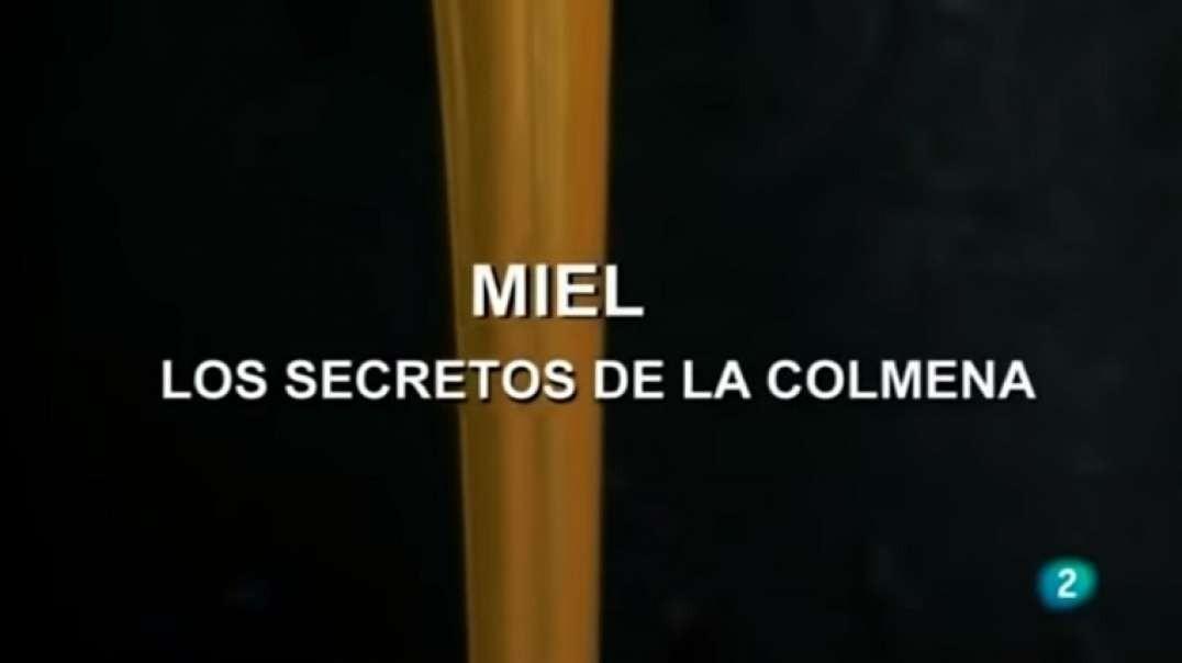 La Miel, los Secretos de la Colmena   Documental