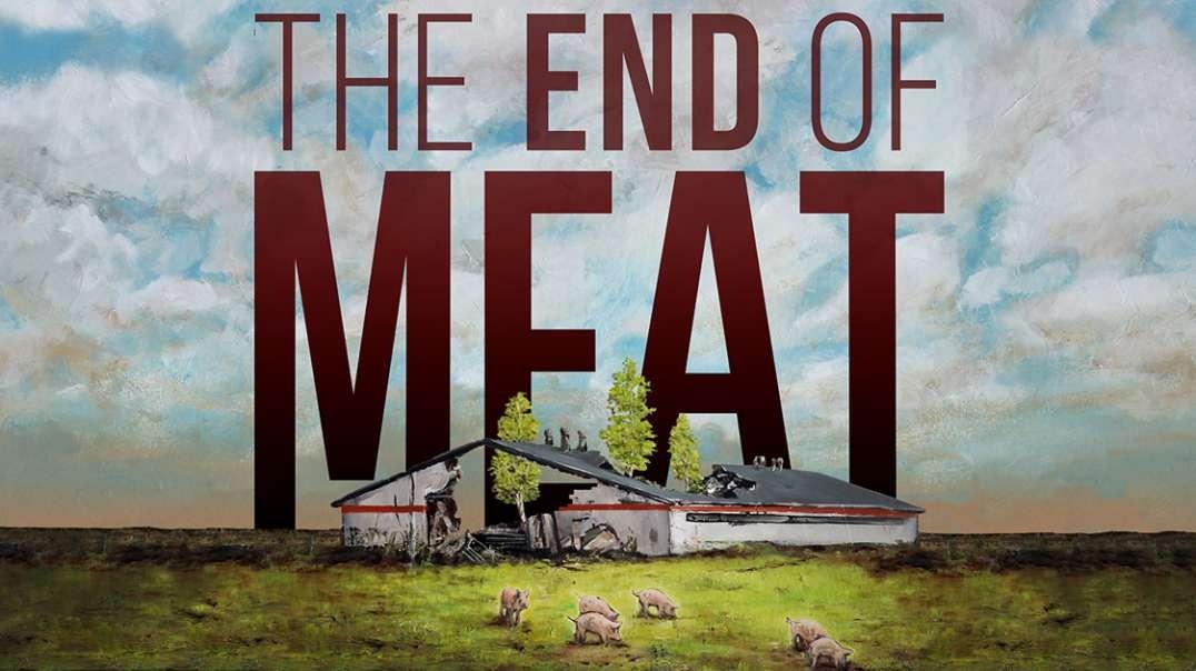 Un mundo sin carne   Documental Salud