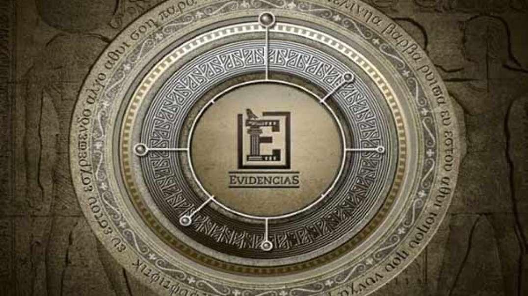 Amonitas - Serie Evidencias