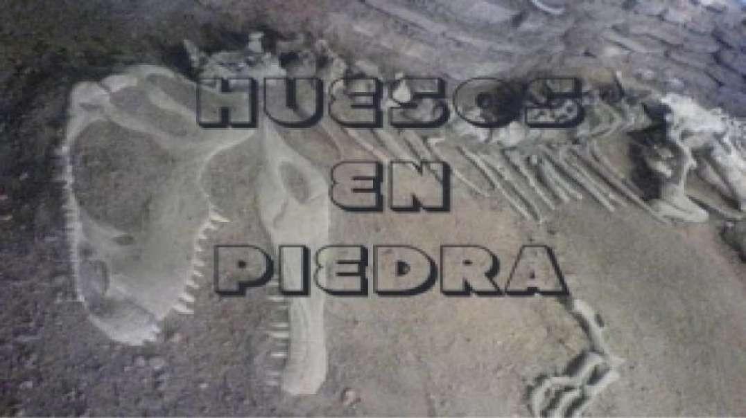 3/9 Huesos en Piedra | El Conflicto del Genesis - Walter Veith
